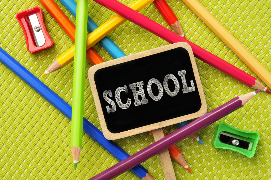 School Curriculum & Schedule